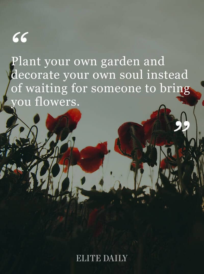 Be The Cultivator of Your Own Internal Beauty