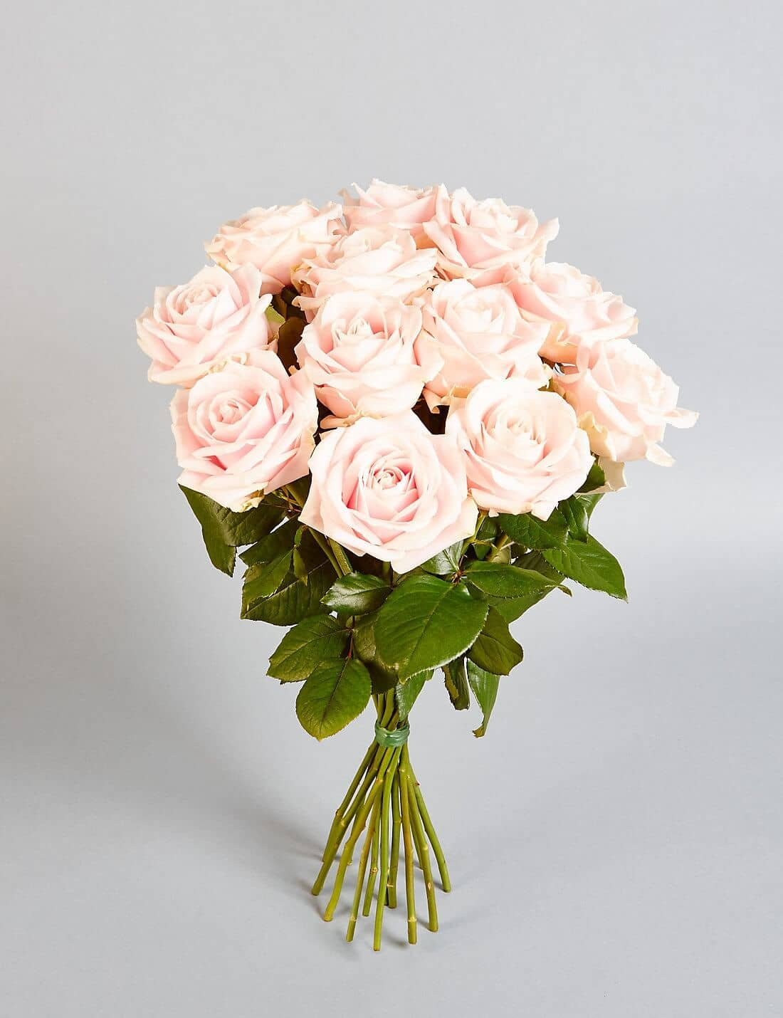 The Simple Pink Rose Bundle