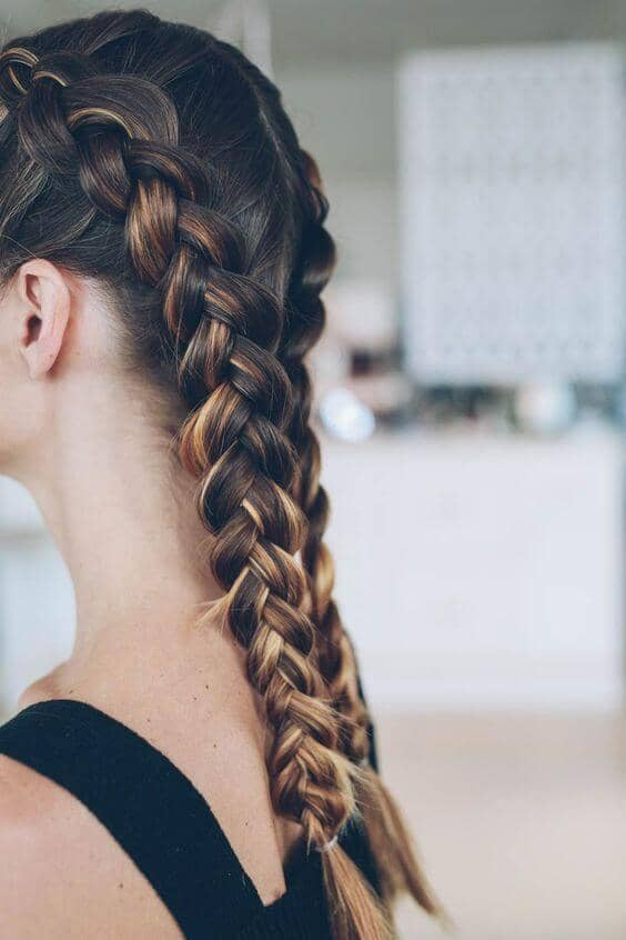 Two Dutch Braids Using Highlights to Advantage