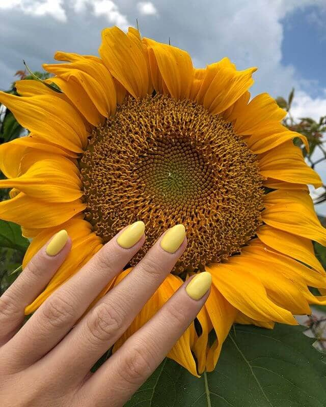 Pale Lemon Yellow Oval Nails