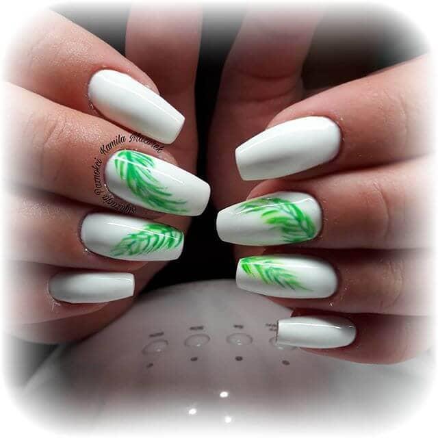 Красивая зеленая листва на ярко-белом